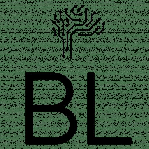 Time BL Consultoria