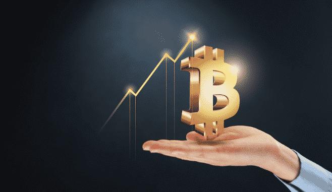 carteiras de bitcoin